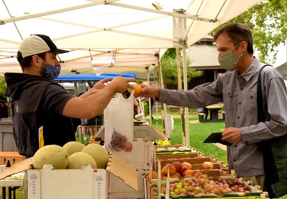 Ben Ford at the Cotati farmers market